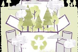 Papierbasierte Verpackungen sind Dank ihrer positiven Umwelteigenschaften Verbraucherliebling