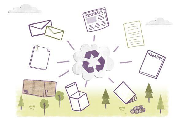 Wiederverwertung und Recycling von Papier – Daten und Fakten