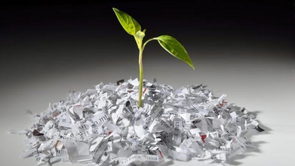 Ist Papier wirklich schlecht für die Umwelt? Two Sides zeigt, was Verbraucher denken