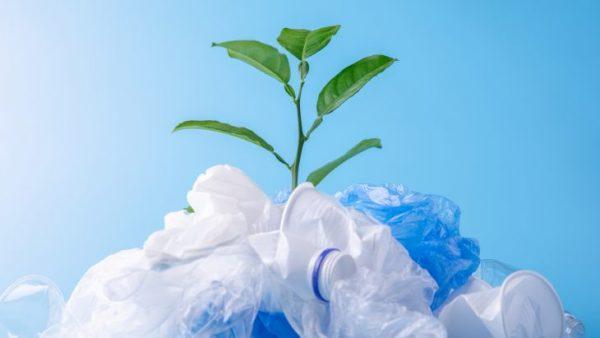 Verbraucher wünschen sich klare Nachhaltigkeitspraktiken der Unternehmen