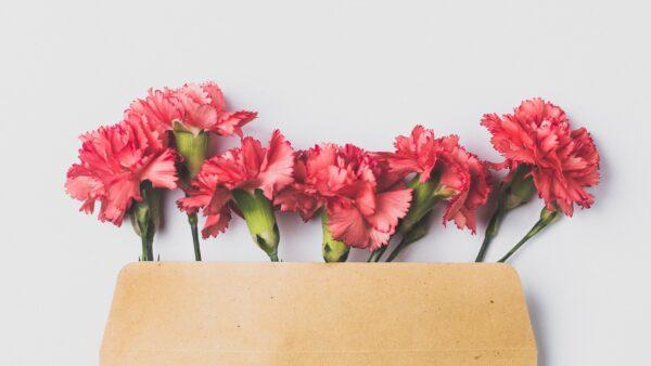 Ein geschriebenes Dankeschön – Was Briefe bewirken können